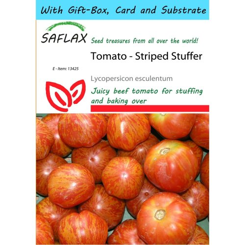 Saflax Gift Set - Tomato - Striped Stuffer - Lycopersicon Esculentum - 10 Seeds - with Gift Box, Card, Label and Potting Substrate