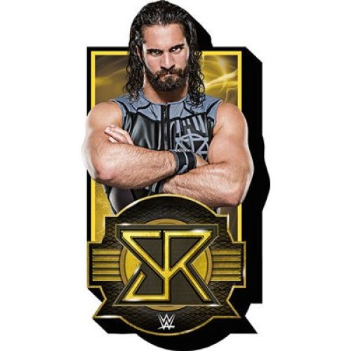 Magnet - WWE - Seth Rollins w/Logo Funky Chunky New 95639
