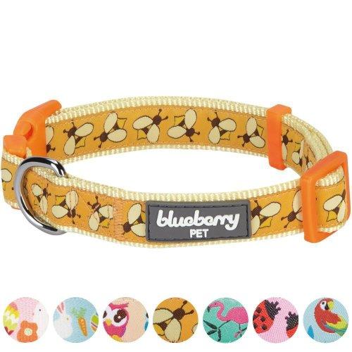 Blueberry Pet New Statement Busy Bees Designer Dog Collar, Medium, Neck 37cm-50cm, Adjustable Collars for Dogs