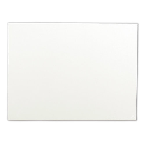 "Artists' Quality Canvas Board-14""X18"""