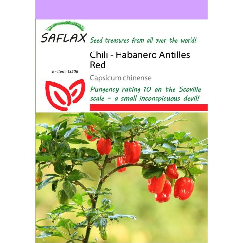 Saflax  - Chili - Habanero Antilles Red - Capsicum Chinense - 10 Seeds
