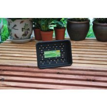 Small Recycled Durable Seed Tray -  tray garland small black x g18b greenhouse 17