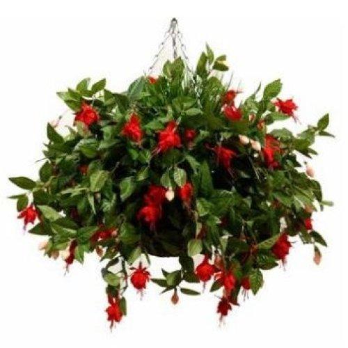 Artificial Fuchsia Hanging Basket