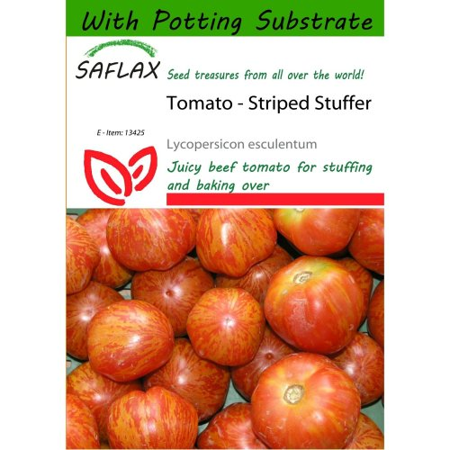 Saflax  - Tomato - Striped Stuffer - Lycopersicon Esculentum - 10 Seeds - with Potting Substrate for Better Cultivation