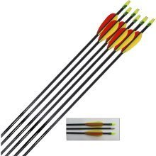 Archery Target Arrows Fibreglass 28 Inch (pack of 10)