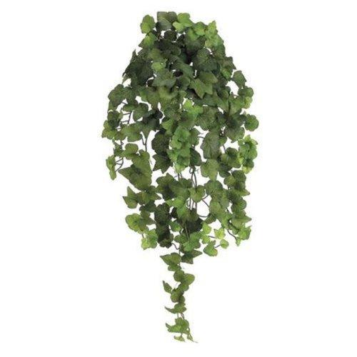 PBI232-GR 31 in. Natural Hedera Ivy Bu-Vi.X10 - Green - 4 Each