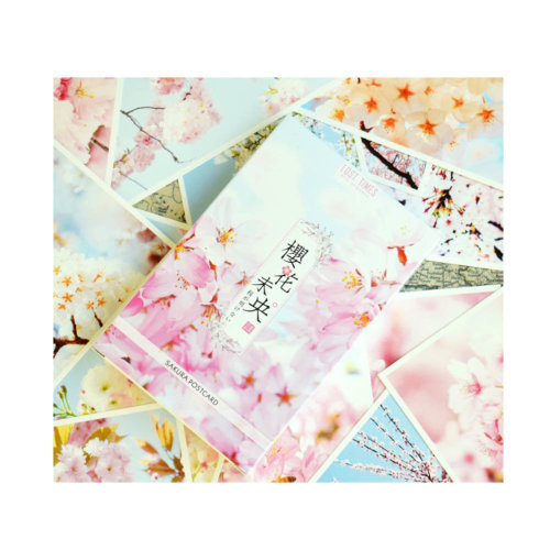 Cherry Blossoms Postcards Nice Postcrads for Collection 30 Cards