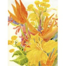 76994a4e9 Carolines Treasures 6015GF Flower - Bird of Paradise and Hibiscus Flag -  Garden Size, 11 x 15 in.