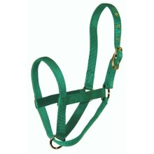 Hamilton 1 Calf Turn out Halter, Green