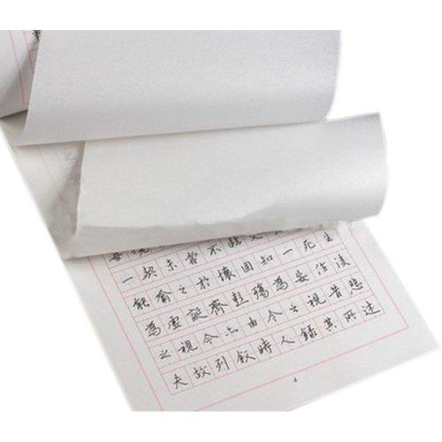 Wang Xizhi Chinese Classic Copybook for Pen Calligraphy, Running Script