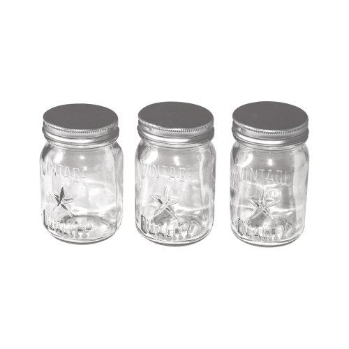 3pk Idea-Ology Mini Glass Mason Jars - Clear
