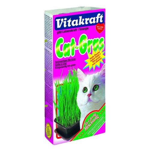 Vitakraft Cat Grass 120g (Pack of 6)