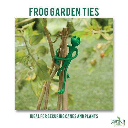 Rubber Decorative Plant Ties 2 Pack Frog Design