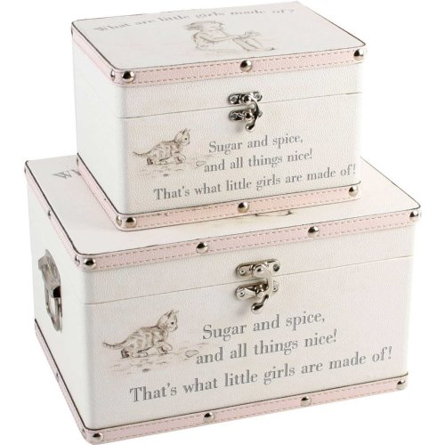 Bambino Luggage Storage Set of 2 Boxes Little Girls