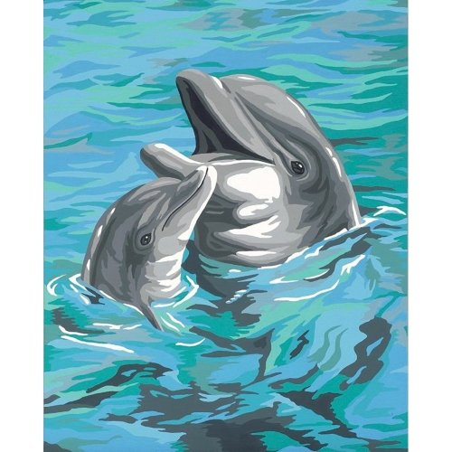 Dpw91148 - Paintsworks Learn to Paint - Dolphin Duo