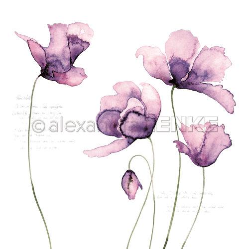 "Alexandra Renke Flowers Paper 12""X12""-Big Violet Tulips"